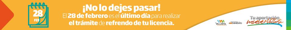 www.puertovallarta.gob.mx
