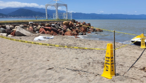 Turista de San Luis Potosí muere ahogado en playas de Marina Vallarta