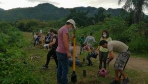 Ahora sí van de la mano; CUC y municipio plantan 85 arboles en ribera del río Pitillal