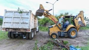 Inician Gobierno Municipal y UDG reforestación de la ribera del río Pitillal